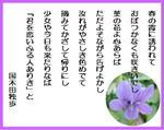 Harunokasumi