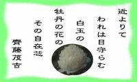 Hakugyokubotan_3