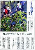 Mijikayo_451x640